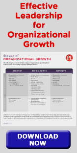 Effective Leadership for Organizational Growth, DOWNLOAD NOW